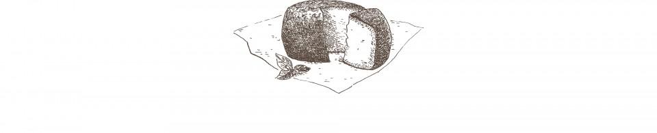 La oveja latxa