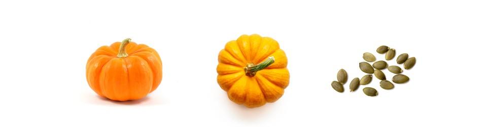 Los placeres gastronómicos del otoño